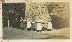 The Fenwood Coven of 1913