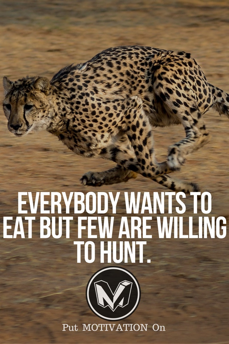 Will to hunt
