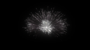 Digital Fireworks