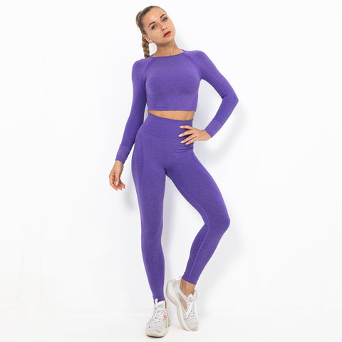 Long sleeve seamless active suits