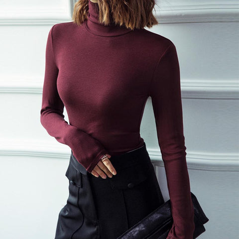 Turtleneck solid basic knit tops