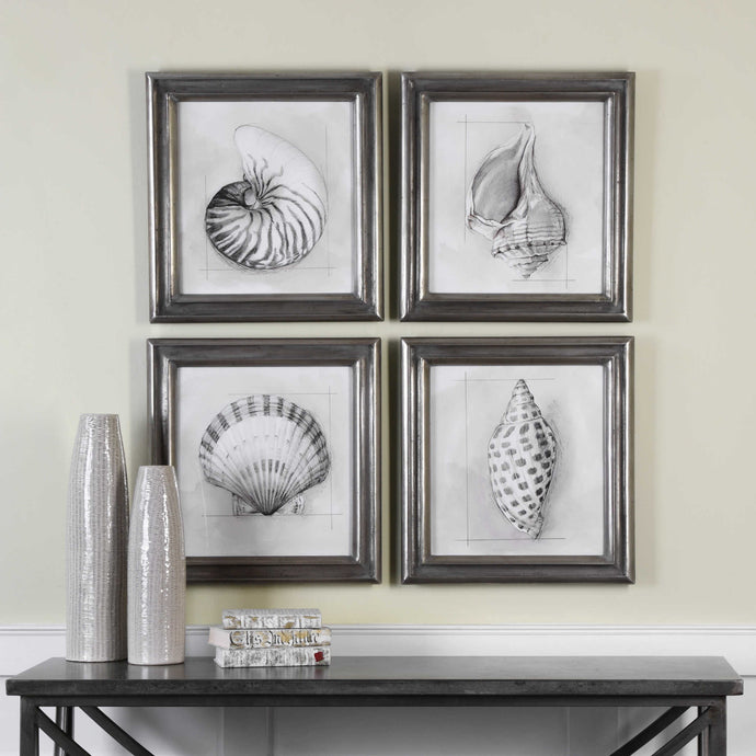 Uttermost Shell Schematic Aquatic Prints (Set of 4)