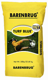 Turf Blue HGT Kentucky Bluegrass