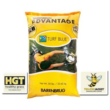 Turf Blue HGT with Yellow Jacket