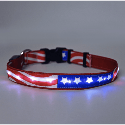 Image of Orion Americana Flag Led Dog Collar Leashes Collars & Petwear