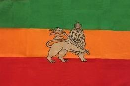 RU Country & National Flags Lion of Judah, Ethiopia Lion Flag 2 X 3 ft. Junior