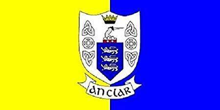 Clare County Ireland Flag 3 X 5 Ft. Standard Cities And Provinces