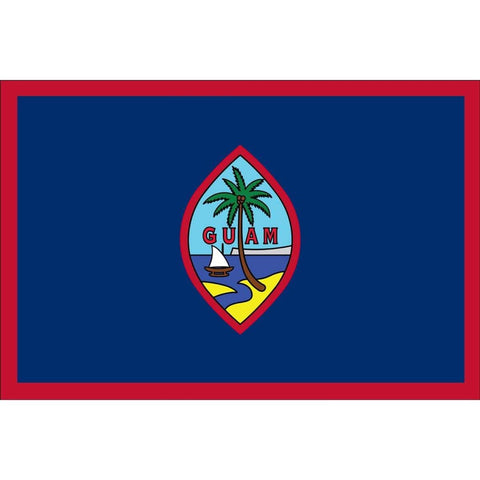 "Collins/Eder Flag Guam 4x6"" stick flag 021914"