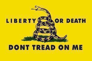 Liberty Or Death Gold Tactical Flag Made In Usa Gadsden