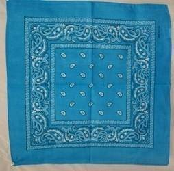 vendor-unknown Other Cool Flag Items Aqua Paisley Bandana