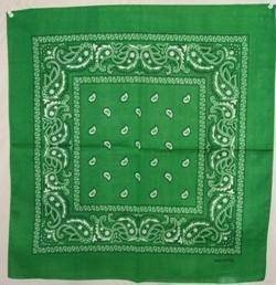 vendor-unknown Other Cool Flag Items Green Paisley Bandana