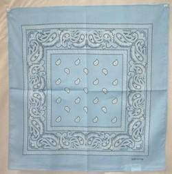 vendor-unknown Other Cool Flag Items Light Blue Paisley Bandana