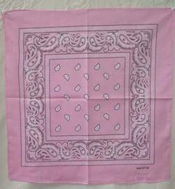 vendor-unknown Other Cool Flag Items Pink Paisley Bandana