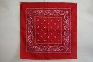 vendor-unknown Other Cool Flag Items Red Paisley Bandana
