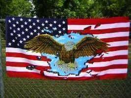 vendor-unknown Other Cool Flag Items USA Eagle Beach Towel