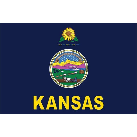 vendor-unknown US State Flags Kansas 12 x 18 Inch Nylon Dyed Flag (USA Made)