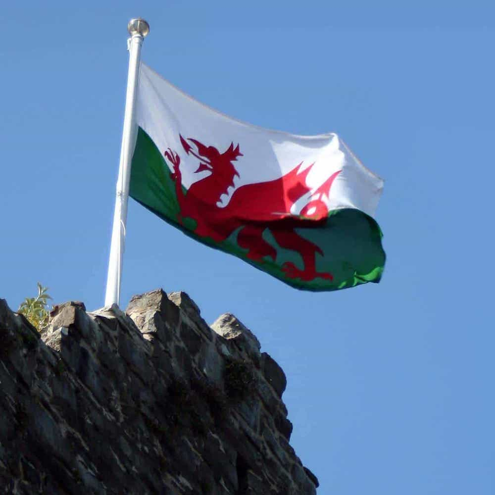 Wales Flag - Economical