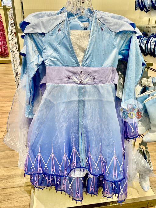 DLR - Frozen 2 - Costume (Youth) - Elsa