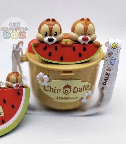 SHDL - Chip & Dale Eating Watermelon Popcorn Bucket