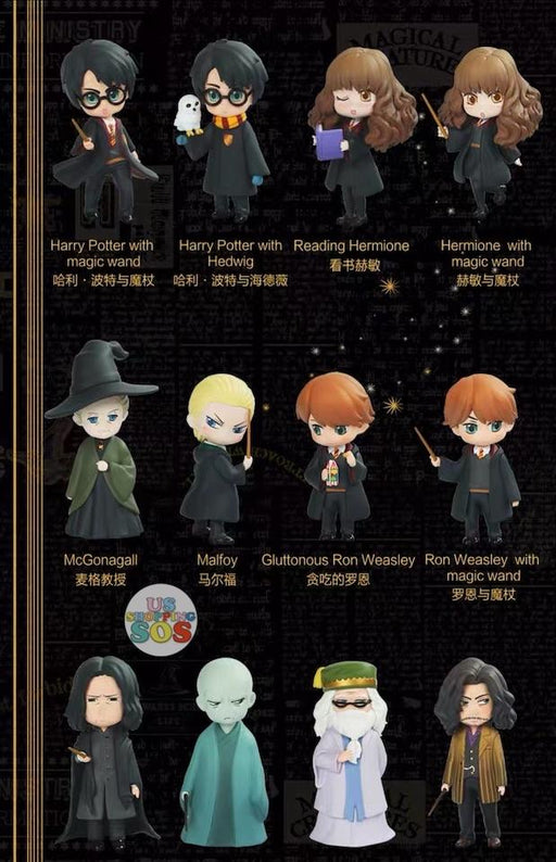 SHDS - Random Secret Figure Box x Harry Potter
