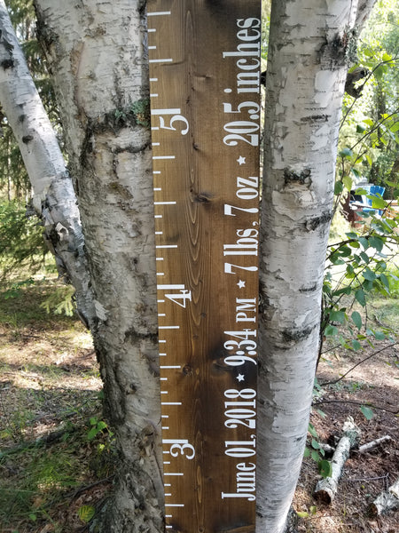 Birth Stats Personalized Growth Chart - Little Prairie Craft Co.