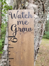 DIY Watch Us Grow Vinyl Growth Chart Decal - Little Prairie Craft Co.