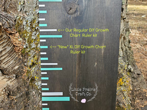 Original DIY Growth Chart Vinyl Ruler Kit - Little Prairie Craft Co.