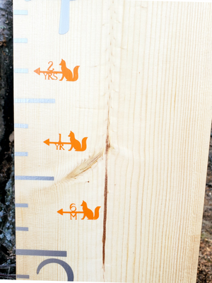Fox Height Marking Arrows - Little Prairie Craft Co.