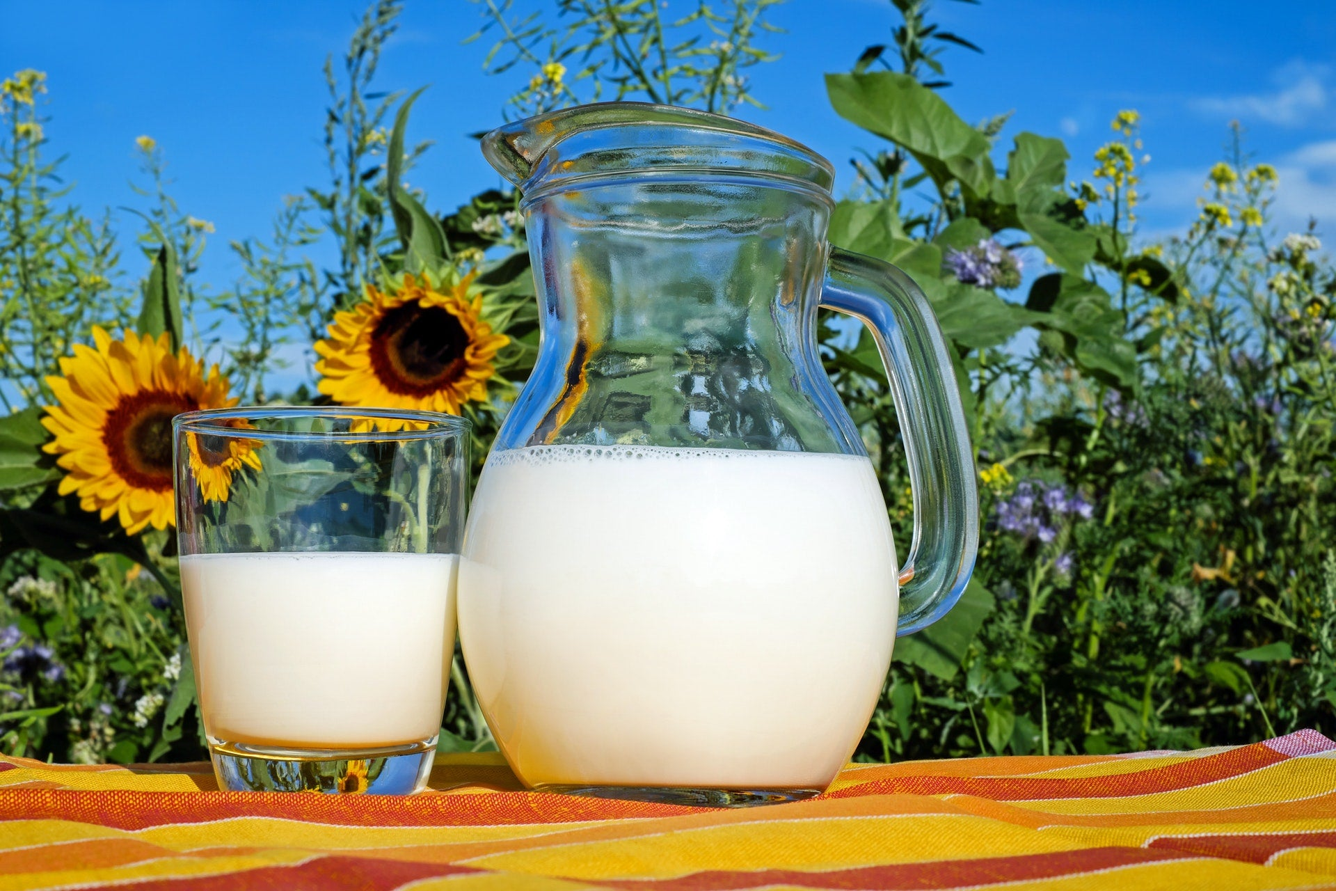 4 Low Carb Milk Alternative You Should Definitely Try
