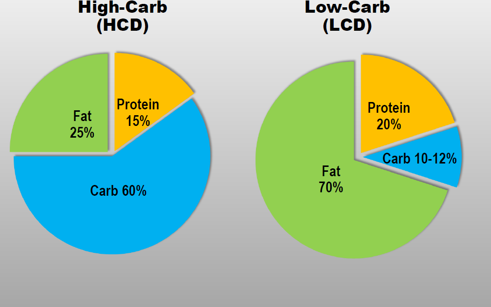 Cyclical Ketogenic Diet
