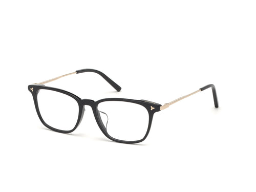 Bally Acetate Frame-5006-D