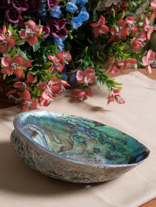 Abalone Shell Craft Soap Holder - The India Craft House