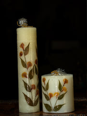 Aromatic Pondicherry Wax Pillar Candles - (Set of 2) - Lily