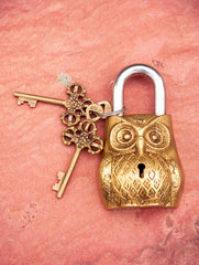 Brass Locks ☼ Owl