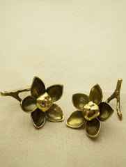 Brass Curio / Paper Weight - Woodrose (Small) Set of 2