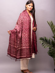 Tussar Silk With Intricate Shibori Dupatta