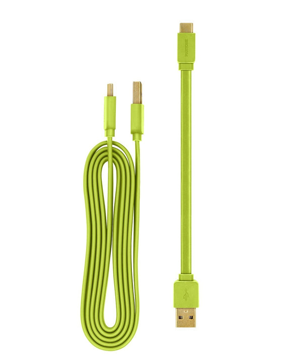 Pantone 20cm + 120cm Gold platted Type C to Type A cable - Green 充電線 - UNWIRE STORE