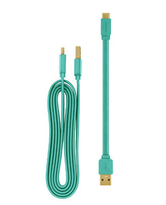 Pantone 20cm + 120cm Gold platted Type C to Type A cable - Turquoise 充電線 - UNWIRE STORE - HONG KONG