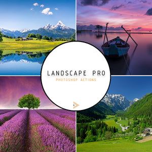 Colossal Photography Bundle - 38,000+ Products!