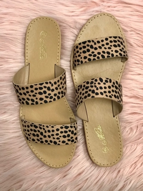 Kate's cheetah slides