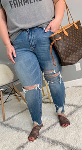 Curvy girl (plus size) Distressed denim