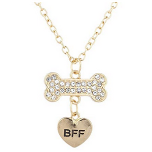 Best Friends Necklace & Dog Collar Jewelry