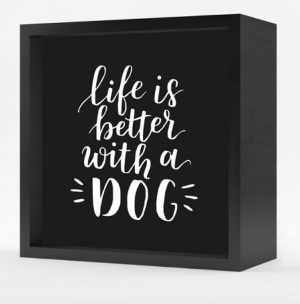 """Life is Better"" Lightbox"