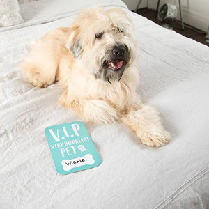 Pet Photo Cards