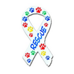 Ribbon with Paws Awareness - Rescue Brooch Pin