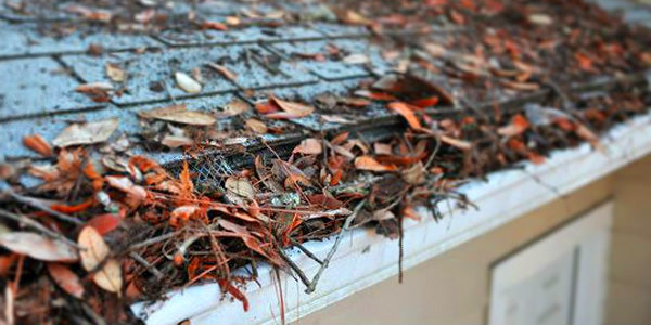5 Ways Clogged Gutters Can Damage Your Home
