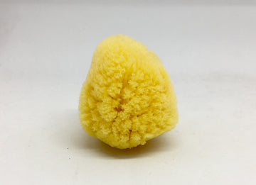 Natural Make Up Sponge - Precious About Make-up, (product_title),Sponges & Applicators, Sydney Heath