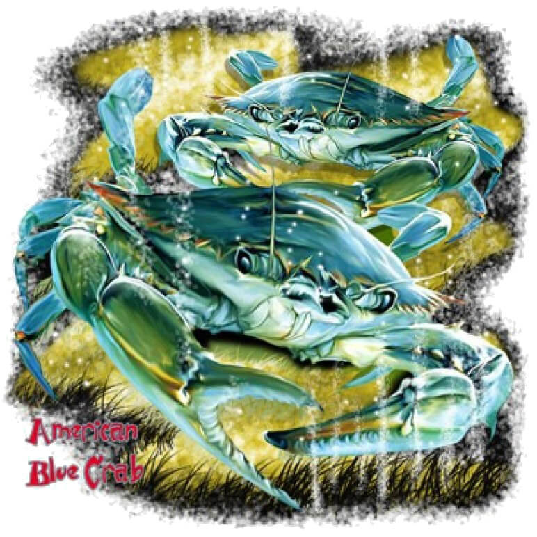 American Blue Crab Printed T-Shirt