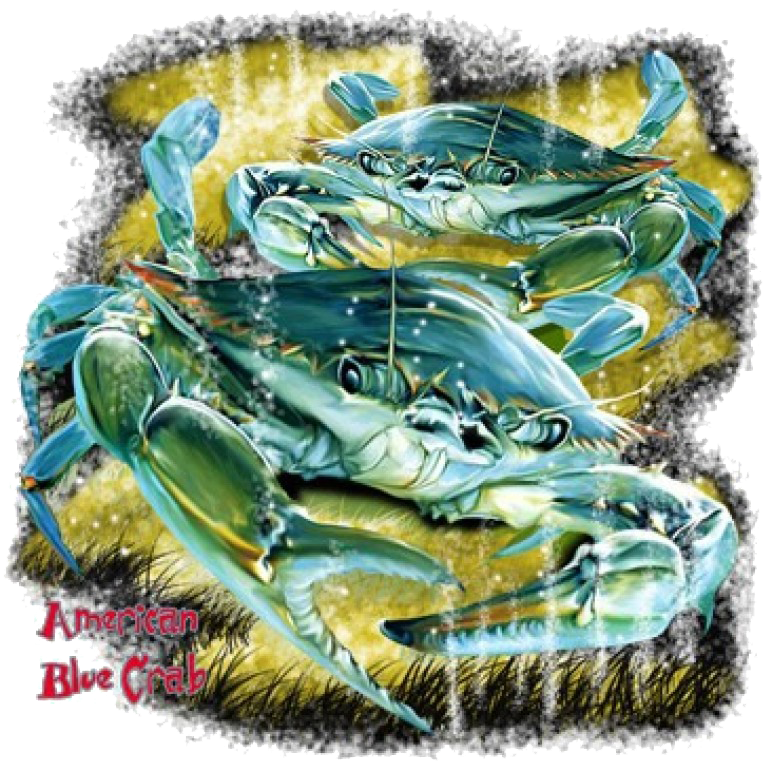 American Blue Crab Printed T-Shirt Tall