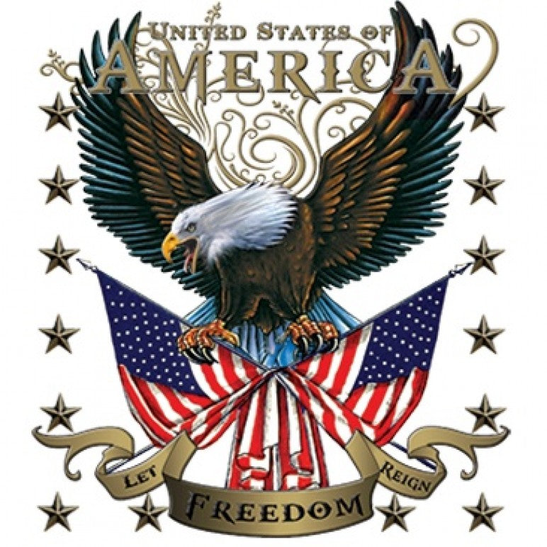 American Eagle Let Freedom Reign Printed T-Shirt Tall